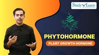 Plants - Growth Hormones