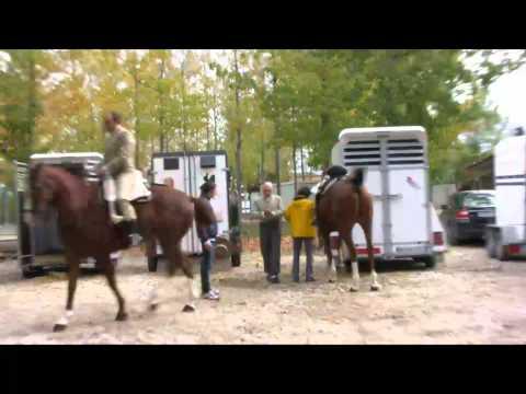 Doma Vaquera (5)