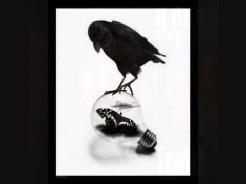 The Crow (dub)