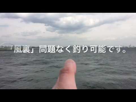 【大物!?】南芦屋浜リアルタイム