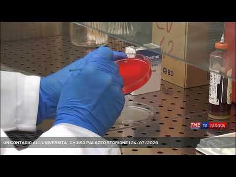 UN CONTAGIO ALL'UNIVERSITA', CHIUSO PALAZZO STORIONE | 24/07/2020