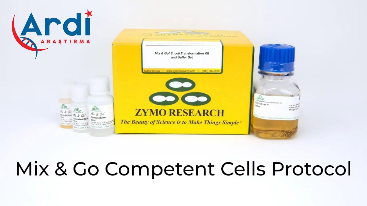 Mix & Go Competent Cells Protokol