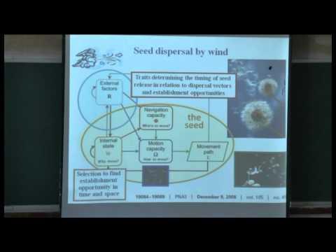 Einführung in die Ökologie der Bewegung | Ran Nathan 29. Juli 2012