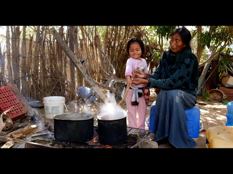 Comcáac (Seri) traditional crafts, dying fibers using natural ingredients.