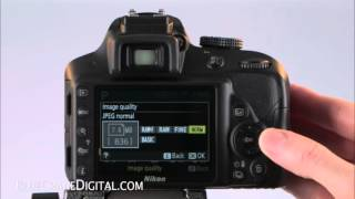 05. Introduction To The Nikon D3300: Basic Controls