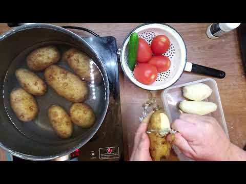 Fat burner - Keto Diet Failed Me. Day 4.0 One Month Potato & Tomato No-Fat Diet. Weightloss Experiment