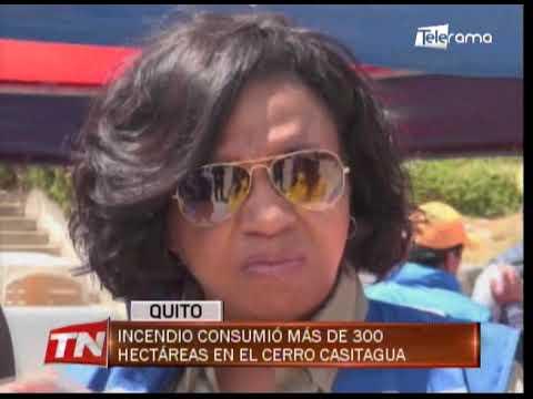 Incendio consumió más de 300 hectáreas en el cerro Casitagua