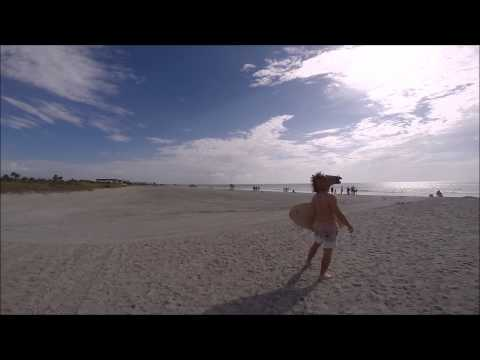 Recent news - There was a horse/Centaur on Cocoa Beach, Florida