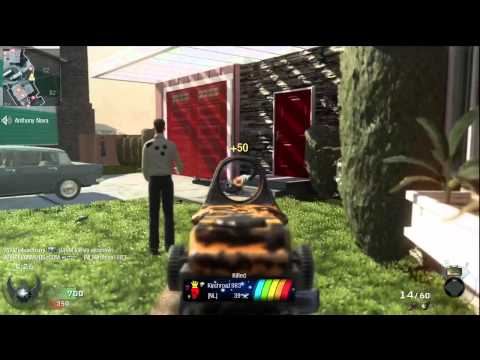 Black Ops Rapid Fire Mod Gameplay- M14