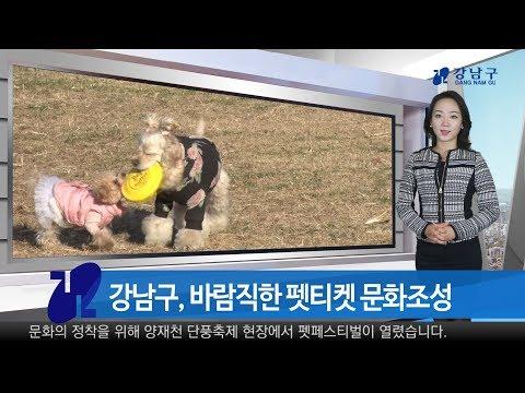 2017년 11월 셋째주 강남구 종합뉴스