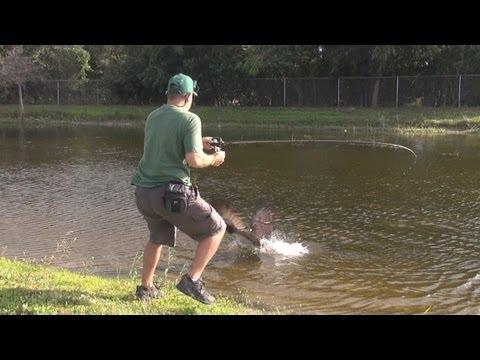 pescatore viene improvvisamente attaccato! incredibile