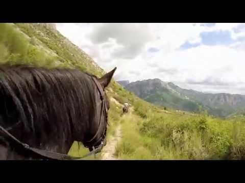 A cheval en France, Initiation équestre en Haute-Provence