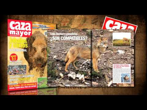 Revistas Federcaza y Caza Mayor Julio 2016