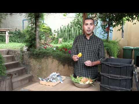 Turbine sua horta com humus feito em casa