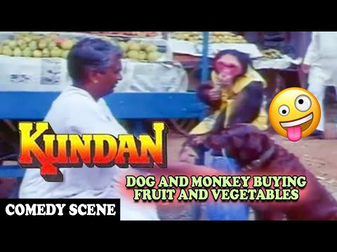 Video Dog and Monkey Buying Fruit and Vegetables Comedy Scene | Kundan Movie | Dharmendra download in MP3, 3GP, MP4, WEBM, AVI, FLV January 2017