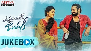 Life is a Rainbow Song Lyrics - Vunnadhi Okate Zindagi