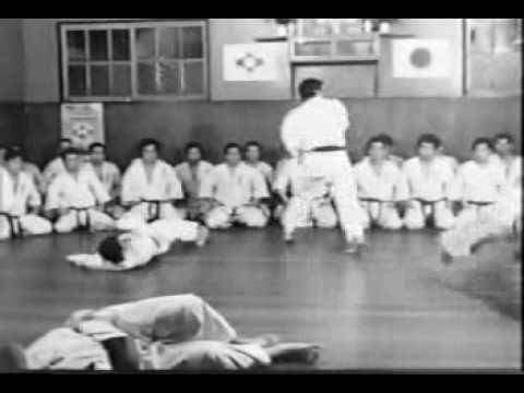 OLD Karate (Ashihara Hideyuki).avi