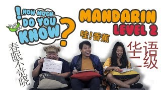 Video How Much Do You Know - Mandarin Level 2 MP3, 3GP, MP4, WEBM, AVI, FLV Desember 2018