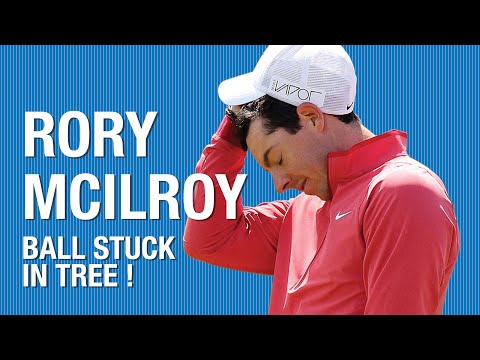 Rory McIlroy's ball gets stuck in a tree
