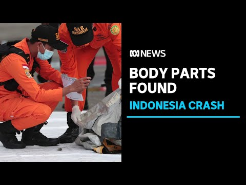 Body parts, debris found in ocean after plane crash off Indonesia | ABC News