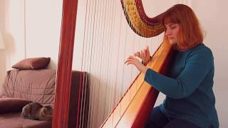 Video Taylor Swift - Delicate (Harp Cover) MP3, 3GP, MP4, WEBM, AVI, FLV Juni 2018