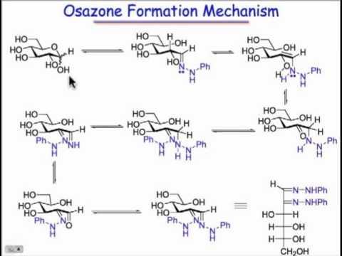Osazone Formation: A Symphony of Sugar Chemistry