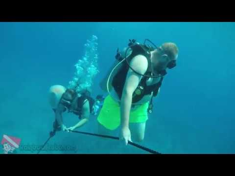 Scuba Diving in Hawaii - vlog 310_Búvárkodás