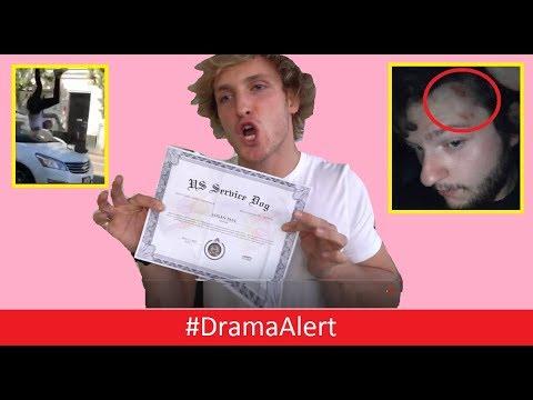 Logan Paul EXPOSED! #DramaAlert YouTuber Hit by CAR! (FOOTAGE) NetNobody ATTACKED!_Legjobb videók: Hírek