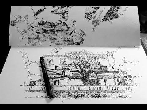 Hướng dẫn học vẽ căn bản 01 - vẽ không khó