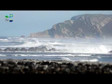 Playa de Los Quebrantos
