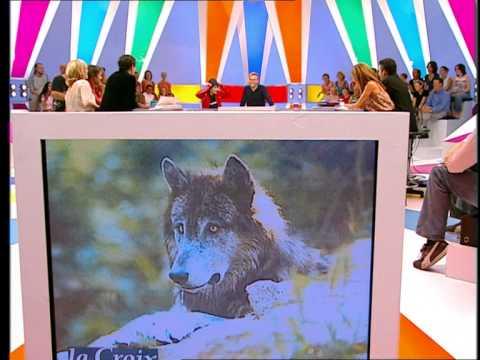 Florence Foresti - Lady Zbouba : L'éleveuse de loups - On a tout essayé