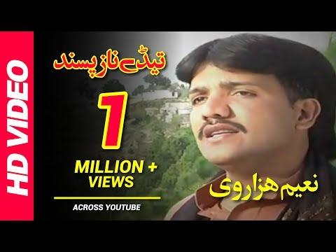 Tedy Naz Pasand Andaz Pasand (Full Song) | Naeem Hazarvi | Saraiki Superhit Songs