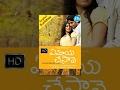 Ye Maaya Chesave Telugu Full Movie || Naga Chaitanya, Samantha || Gowtam Vasudev Menon || AR Rahman