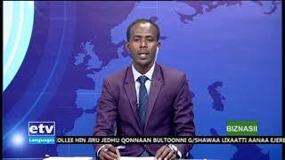 Oduu Biznasii Afaan Oromoo Dec, 31/2019  |etv