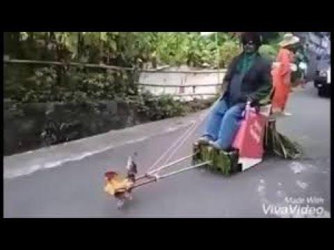 Funny videos   Best joke videos   Funny videos Fails #7