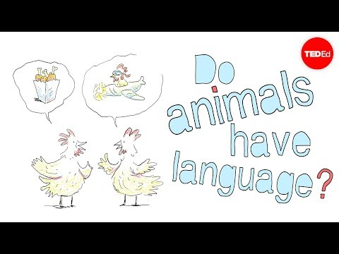 Do animals have language?