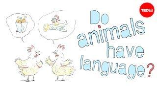 Do animals have language? – Michele Bishop