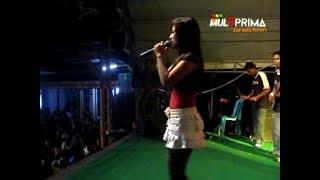 Download Lagu Acha Kumal - Cinta Putih - PANTURA 140408 Mp3