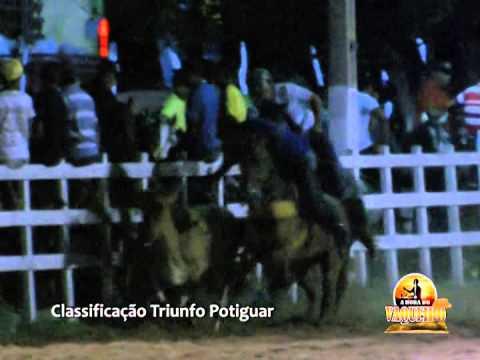 Classificação de  Vaquejada de Triunfo Potiguar 2014