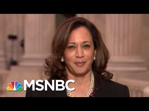 Senator Kamala Harris: Postpone The Brett Kavanaugh Hearings   All In   MSNBC