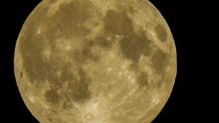 """""""Super moon""""  caught with my Nikon Coolpix L820Thought it was interesting sight to share with you.Music license and atribution:LICENSE  -  https://machinimasound.com/licenseATRIBUTION  -  https://machinimasound.com/music/epic/the-land-of-the-wizardlicense in PDF:https://docs.google.com/file/d/0B910eQapo06uQ0dqUmhHWDZwVDA/edit?usp=sharingThe registration of our music with SafeCreative.org provides you (and others i.e. YouTube) with evidence, immediately available, that we are the rights holders of the works available and that we have registered said works under Creative Commons Attribution."""