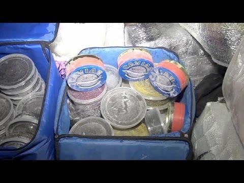 Ρωσία: Ανακάλυψαν μισό τόνο χαβιάρι σε νεκροφόρα