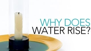 Why Does Water Rise? - Sick Science! #001