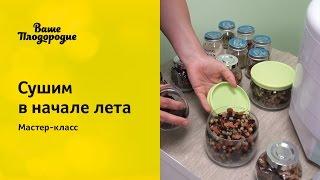Лида Красильникова рассказывает о том, что можно приготовить сейчас на сушилке Изидри. Как высушить пастилу, суповые заготовки и многое другое. Мастер-класс был проведен в Уфе 8 июня 2015 г. для посетителей магазина «Ваше Плодородие».Интернет-журнал о природном земледелии «Ваше Плодородие»: http://vashe-plodorodie.ruМы ВКонтакте: http://vk.com/plodorodieОдноклассники: http://www.ok.ru/plodorodieСсылка: http://youtu.be/_4LpRGZiBEQ