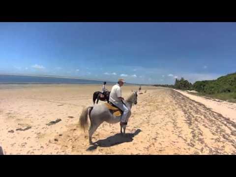 Le Mozambique à cheval