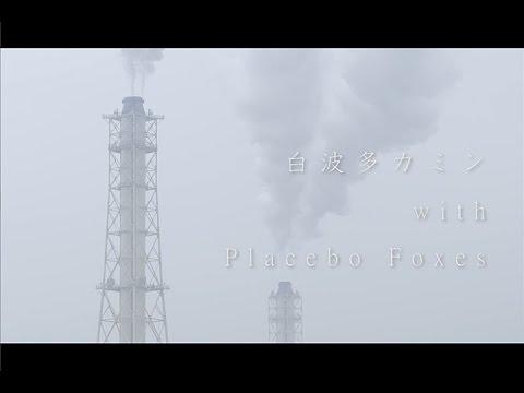 白波多カミン with Placebo Foxes / バタフライ видео