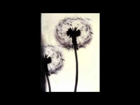 Jono McCleery - She Moves lyrics