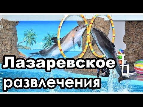 Куда сходить в ЛазаревскомЧасть 4. Развлечения.Дельфинарий океанариум и пр.