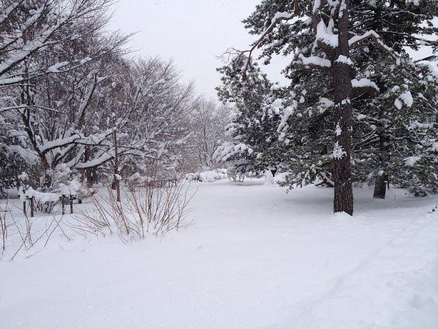 Nieve que puede enfriarte y relajarte