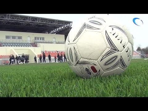 Петербургское «Динамо» сыграет на стадионе «Электрон» с воронежским «Факелом»